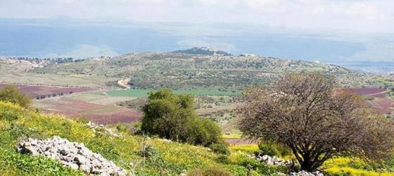 Укулеле в Галилее